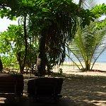 Photo of Mangrove Beach Cabanas & Chalets