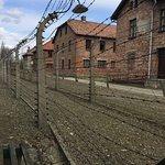 Foto di Krakow Tours
