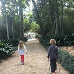 Great day trip! The kids love walking through the gardens. Eat outside under the trees and enjoy