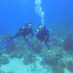 Photo de Atlantis Plongée Guadeloupe