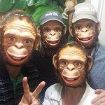 Five Monkees