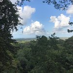 Photo of Nature Observatorio