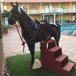 Rancho El Sobrino Curacao Foto