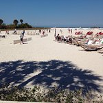 Photo de Sheraton Sand Key Resort