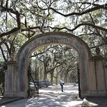 Beautiful gate to Wormsloe Site and the start of the Oak Avenue