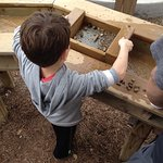 Mining for fossils.