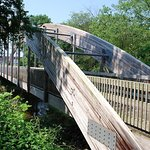Tar River Trail