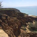 Torrey Pines State Natural Reserve Foto