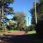 Photo de Le parc Albert