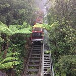 Blue Mountains takiing the train down to the rainforest