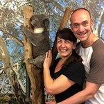 Featherdale Wildlife Park photo ops with koalas