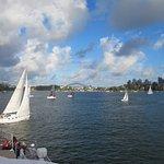 Views on the Parramatta River