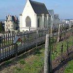 une vue des vignes et la chapelle