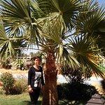 Foto de Regency Plaza Aqua Park & Spa Resort