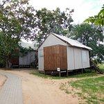 Photo of Nkambeni Safari Camp