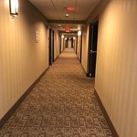 Foto de Hampton Inn and Suites Roseville