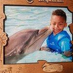 Foto de Dolphinaris Cancún