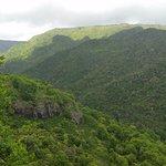 Black River Gorges National Park Photo