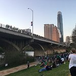 Congress Avenue Bridge / Austin Bats Foto