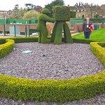hedge shaped camera man and Slazenger tennis ball
