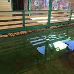 Photo de Crane Point Museum & Nature Center