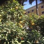 Foto di Excel Hotel Roma Montemario