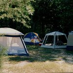 Not just for RV's, we have spots perfect for tent camping as well!