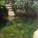 swim here