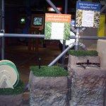 Types of Irrigation Display