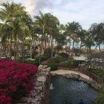 Bild från Hyatt Regency Aruba Resort and Casino