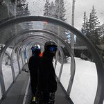 New habitrail to chair lift