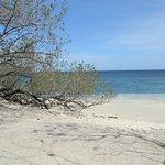 Photo de Playa Conchal