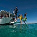 Ningaloo Ecology Cruises Glass Bottom Boat Foto