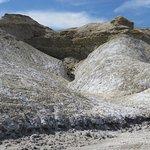 salt dunes view from the boardwalk