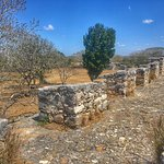 Foto di Dzibilchaltun Ruins
