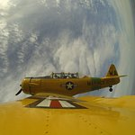Hubby piloting the T-6 TEXAN!
