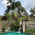 Foto de The Village Resort and Spa
