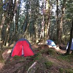 brod bay tent area