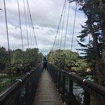 bridge at start of track