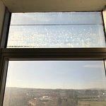 Vistas impresentables, la limpieza de las ventanas es inexistente y la rehabilitación se paraliz