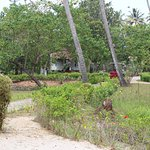 Photo de Abad Turtle Beach