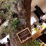 Vapiano Disney Village Photo