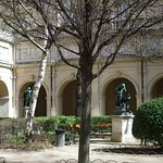 Photo of Musee des Beaux-Arts