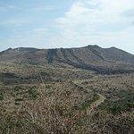 展望台から三原山