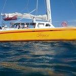 Photo of Pez Gato Cabo Sailing Catamarans
