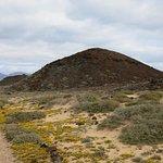 Foto de Isla de Lobos