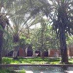 Photo of Dar al Hossoun