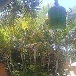 Jardin q respeta lo ecologico