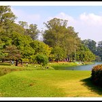 Photo of Ibirapuera Park