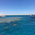 Foto di Tiran Island